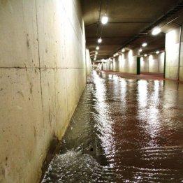 豪雨の日にゴポゴポ…トイレから水が噴き出す現象の正体