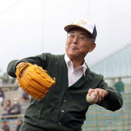 無類の野球好き