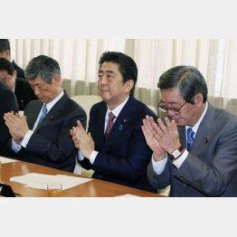 権力の座に恋々(C)日刊ゲンダイ