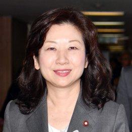 安倍首相との「同期」をアピール(C)日刊ゲンダイ