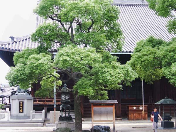 駅から歩いて10分で寺町へ(C)日刊ゲンダイ