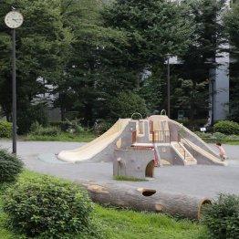 おちおち公園でも遊ばせられない(写真はイメージ)