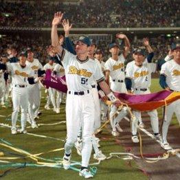 1996年シーズンには日本一に