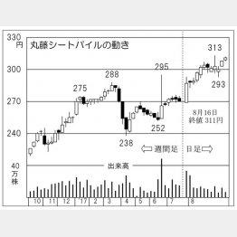 丸藤シートパイル(C)日刊ゲンダイ