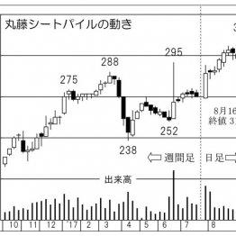 三井物産系「丸藤シートパイル」 軟調相場で中小型株狙い
