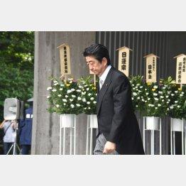 15日、鳥ヶ淵の戦没者墓苑での安倍首相(C)日刊ゲンダイ
