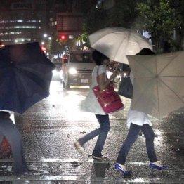 気象予報士に聞いた 「長雨なのに水不足」の謎とその影響