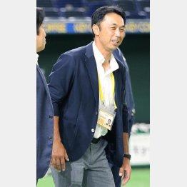 「宮本監督」を期待するファンは少なくないはず(C)日刊ゲンダイ
