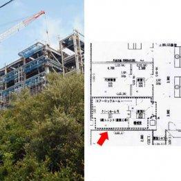 建設中の獣医学部棟と図面