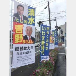 そこかしこに(C)日刊ゲンダイ