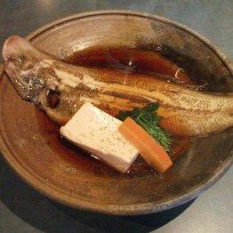 酒愉菜彩 嵯こう(本町)食べ頃を重視 こだわりの魚料理