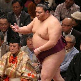 宝富士大輔 横綱白鵬の立ち合いエルボーを最初に破った男