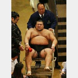 右太ももの裏を負傷し車椅子で引き揚げる高安(C)日刊ゲンダイ