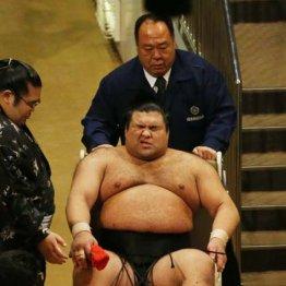 右太ももの裏を負傷し車椅子で引き揚げる高安