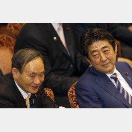 菅官房長官と安倍首相(C)日刊ゲンダイ