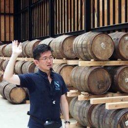 静岡市は地酒が熱い 注目スポットを一足先に見学