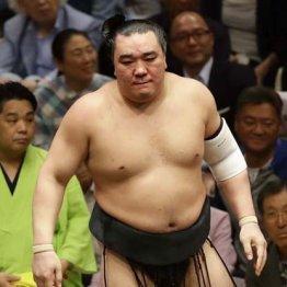 ひとり気を吐く横綱・日馬富士