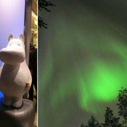 旅行 福祉大国フィンランドのフィヨルド見学が大人気
