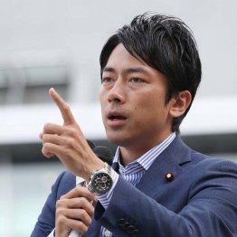 農林中央金庫を批判した進次郎氏(C)日刊ゲンダイ