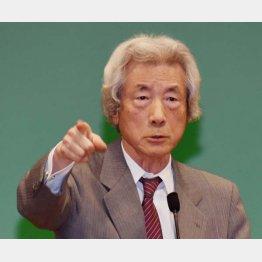 選挙上手の小泉純一郎元首相(C)日刊ゲンダイ