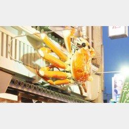 寒くなるとカニ料理が人気に(写真はイメージ)/(C)日刊ゲンダイ