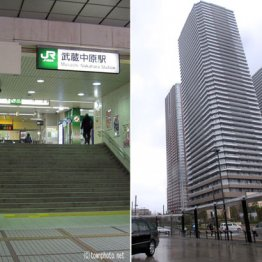 戸建て土地価格上昇率1位 武蔵中原駅の魅力と落とし穴