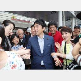 11区の小泉進次郎氏(C)日刊ゲンダイ