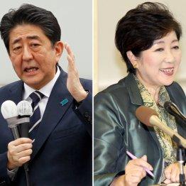 """構図が見えた総選挙 極右の独裁者2人が""""悪魔対決""""の醜悪"""