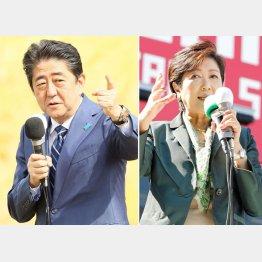 福島市(安倍首相)、JR池袋駅西口(小池代表)でそれぞれ第一声/(C)日刊ゲンダイ