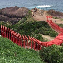 山口県「長門・萩」 絶景と世界遺産の旅へ