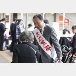 4区の野田佳彦前首相(C)日刊ゲンダイ