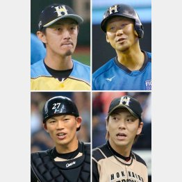 4人の去就は(左上から時計回りに増井、中田、宮西、大野)/(C)日刊ゲンダイ