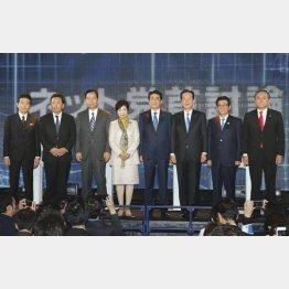 何のための選挙なのか(C)日刊ゲンダイ