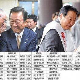 小沢一郎氏と野田元首相(右)