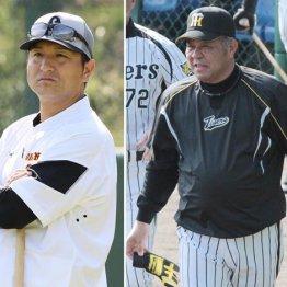巨人高橋監督と今季阪神二軍監督だった掛布雅之氏