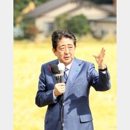 """田んぼのなかで""""ひとり演説""""/(C)日刊ゲンダイ"""
