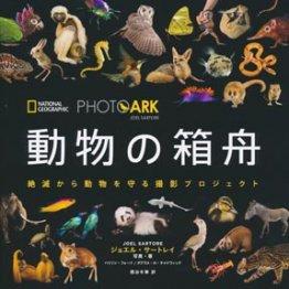 「PHOTO ARK 動物の箱舟」ジョエル・サートレイ著 写真、関谷冬華・訳