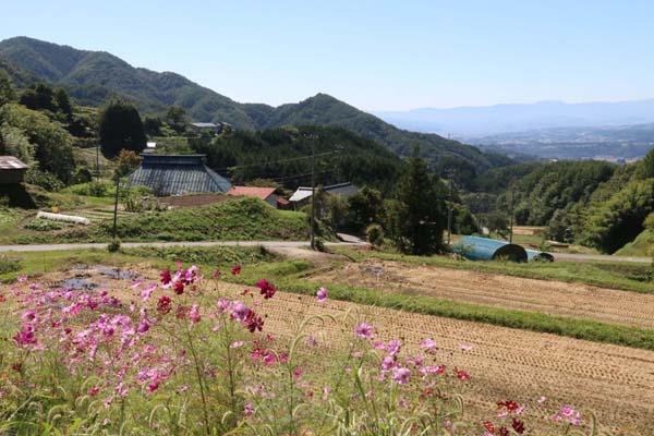 絵に描いたような里山の風景(C)日刊ゲンダイ