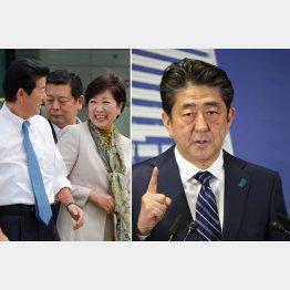 改憲補完勢力が「第一」/(C)日刊ゲンダイ