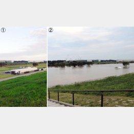河川敷の宿命(提供写真)