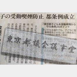 公募意見の公開も参考人招致もなし(C)日刊ゲンダイ