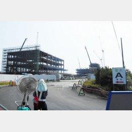建設が進む加計学園獣医学部のキャンパス(C)日刊ゲンダイ