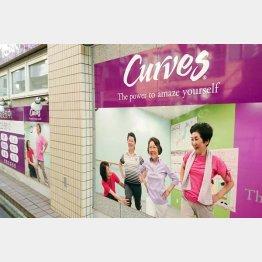 若い女性からシニア層まで大人気(C)日刊ゲンダイ