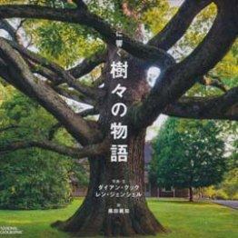 「心に響く樹々の物語」ダイアン・クック、レイ・ジェンシェル著 黒田眞知訳