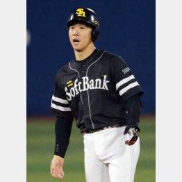 鶴岡は36歳とベテランだが…(C)日刊ゲンダイ