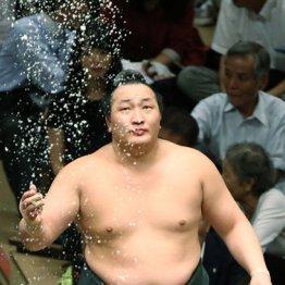 千代翔馬は生前の千代の富士に最も愛された弟子だった