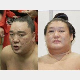 横綱日馬富士(左)と貴ノ岩(C)共同通信社