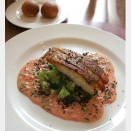 湯浅醤油の「勢粋梅」をソースに用いた真鯛料理/(C)日刊ゲンダイ