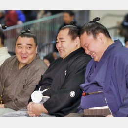 左から談笑する日馬富士、鶴竜、白鵬(C)共同通信社
