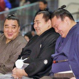 左から談笑する日馬富士、鶴竜、白鵬